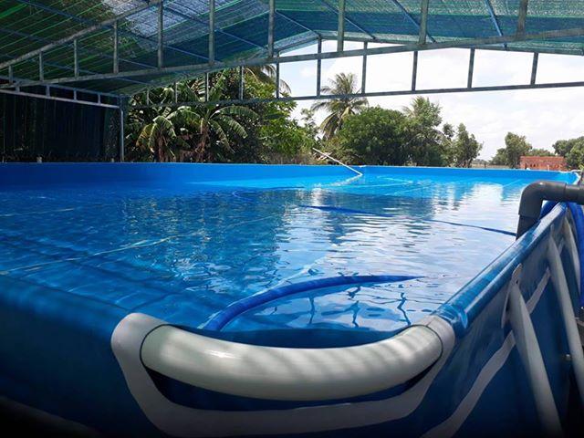 Hồ bơi di động tại Tây Ninh